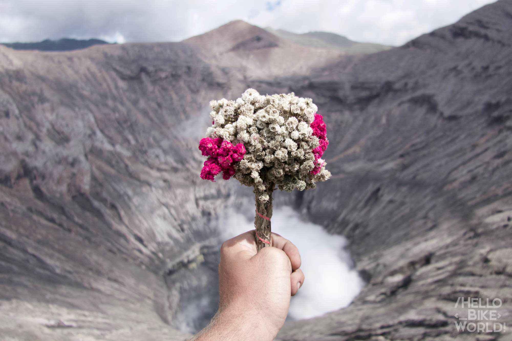 Offering for Bromo