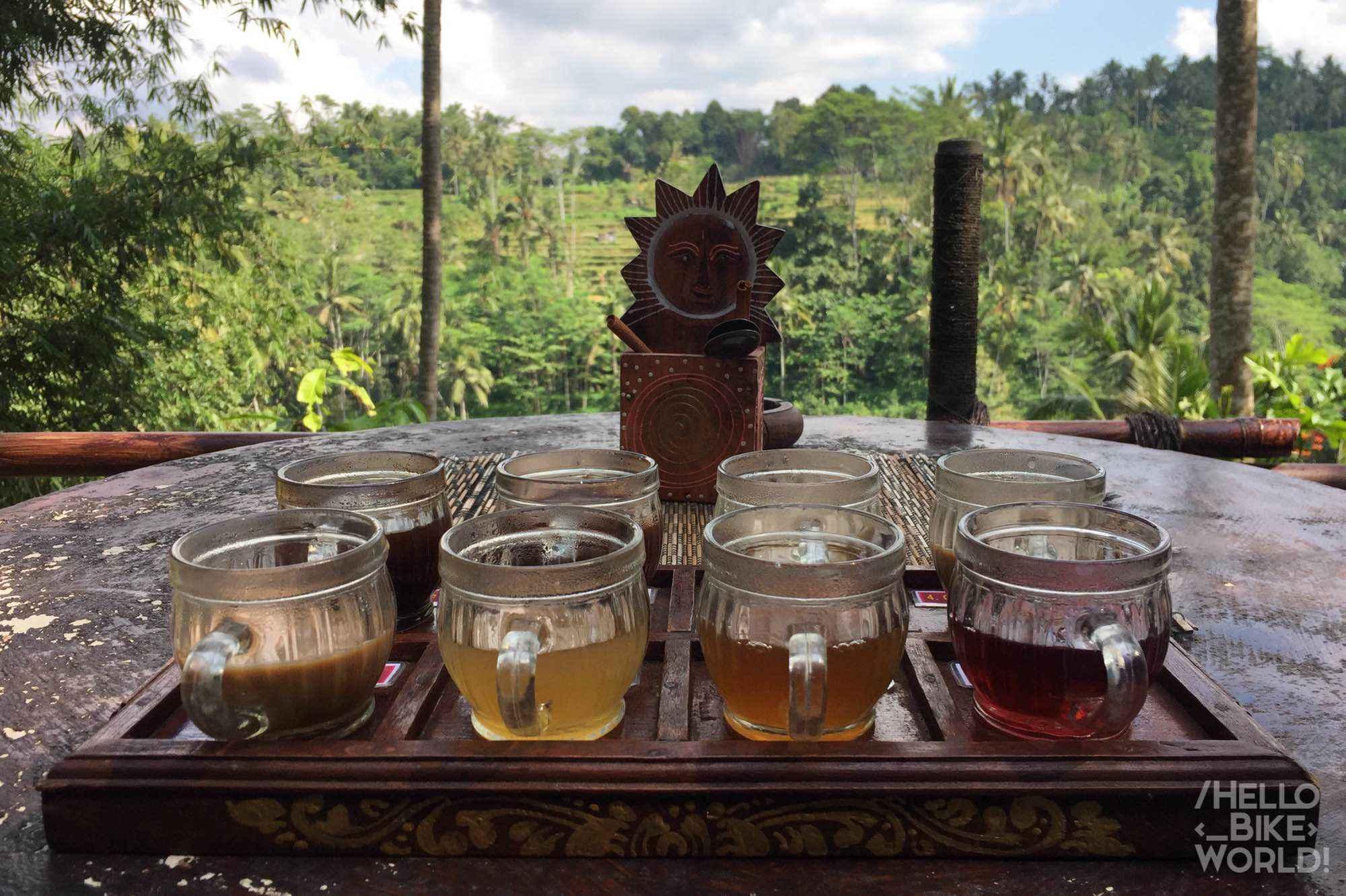 degustación de cafés