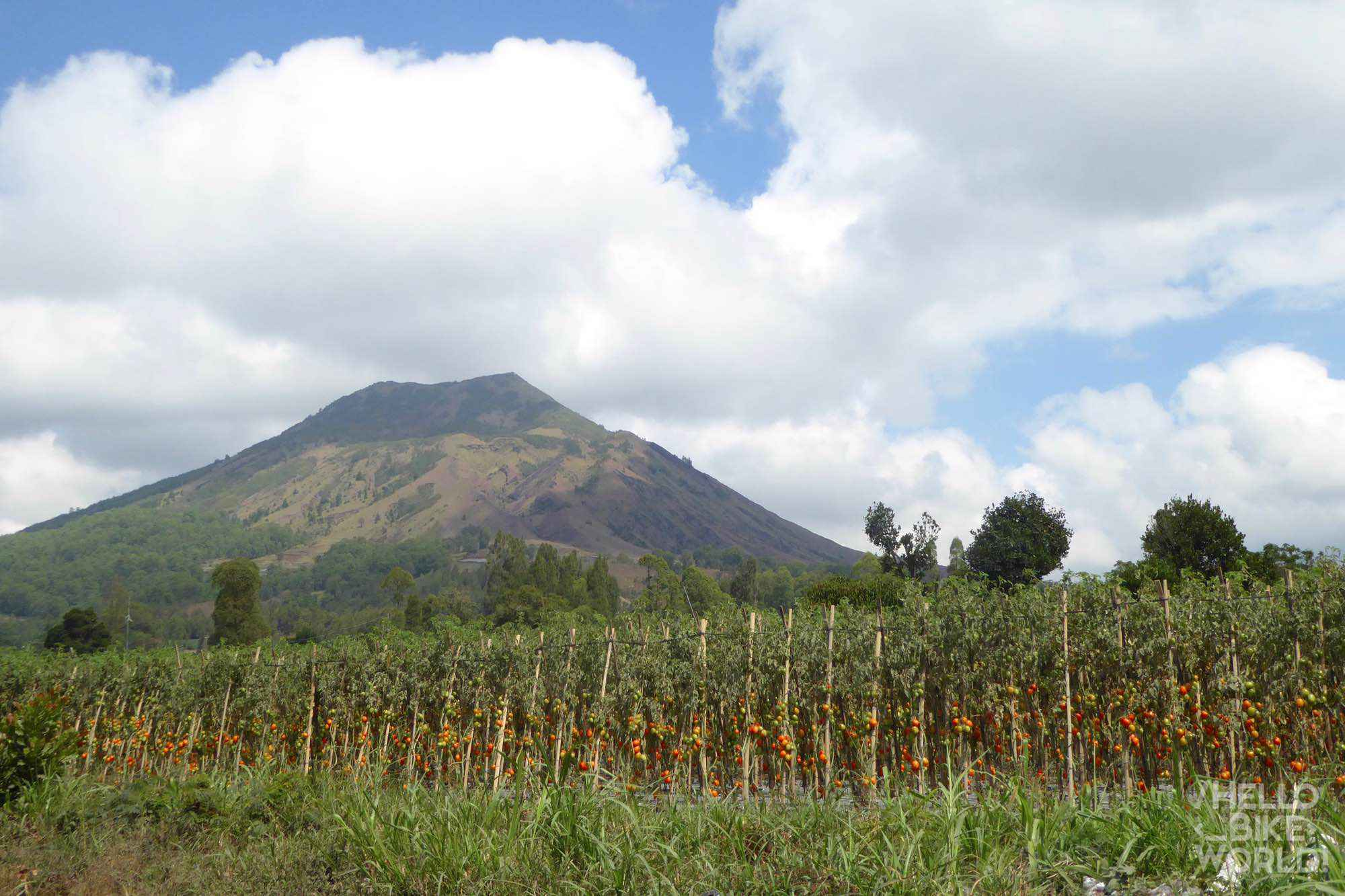 the crater, view Batur